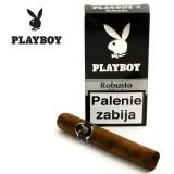 Playboy Robusto
